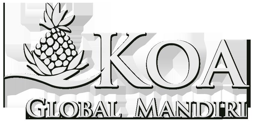 Koa Global Mobility United States and Turkey Residence Application